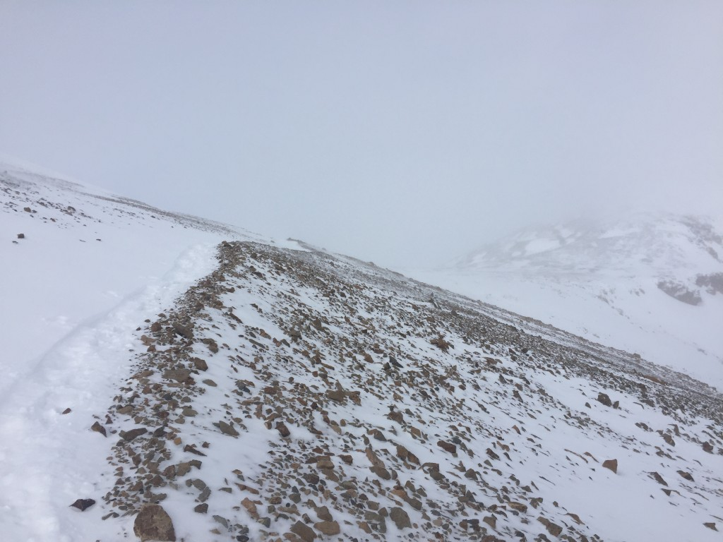 The trail down to Mt. Bross, the most view I got all day.