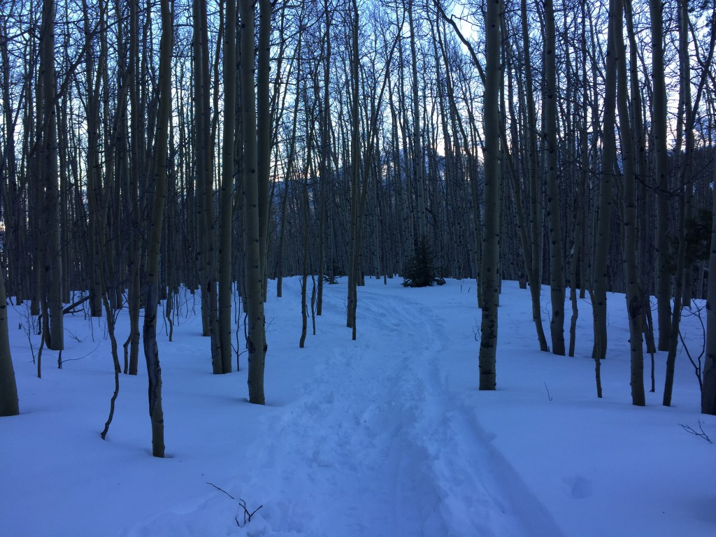 Mt. Elbert winter climb