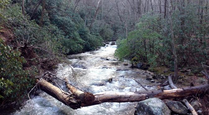 Benton MacKaye Trail spring break hike